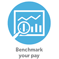 Home Page Icon - Benchmark your pay