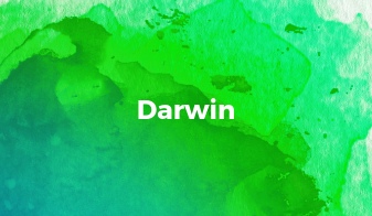 Chronic Disease Management and Healthy Ageing Program - Darwin